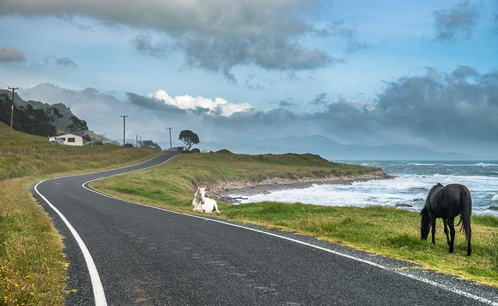 East Cape nz East Cape Road New Zealand