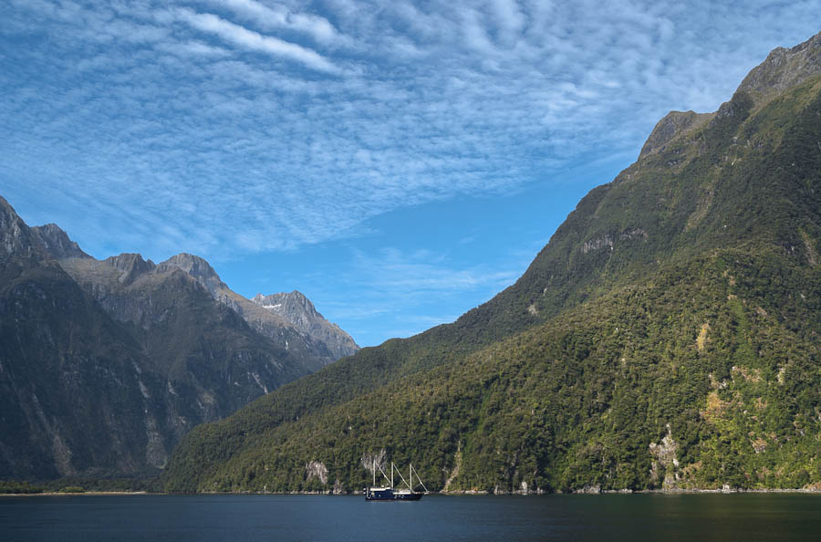 Mt Philipps, Milford Sound, Fiordland, New Zealand