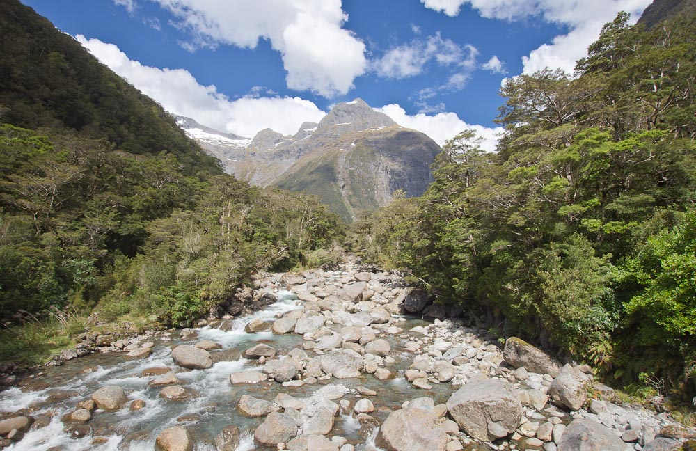 Donne River with Mihj Peak, Milford Road, New Zealand