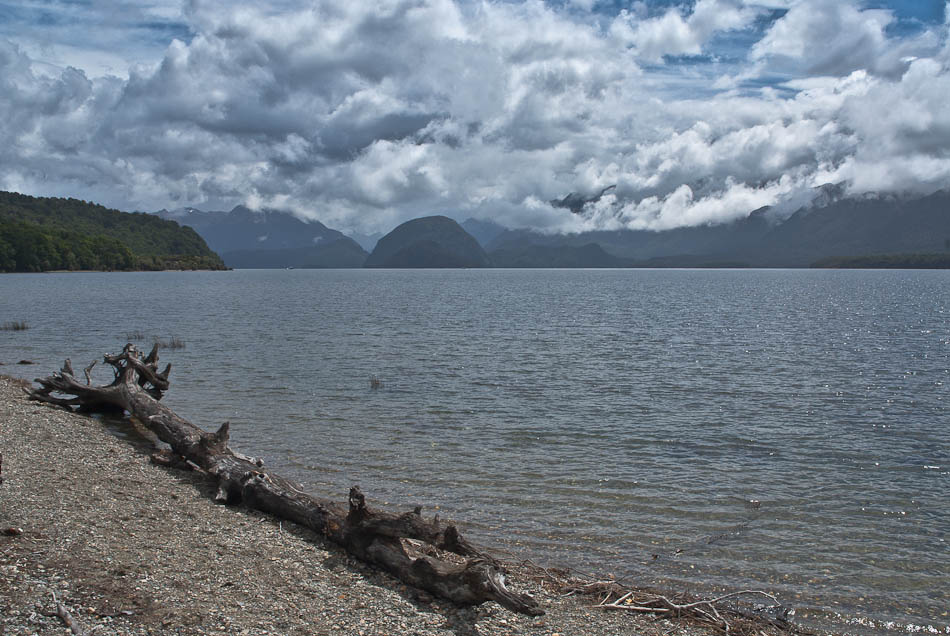Shallow Bay, Lake Manapouri, Fiordland, New Zealand