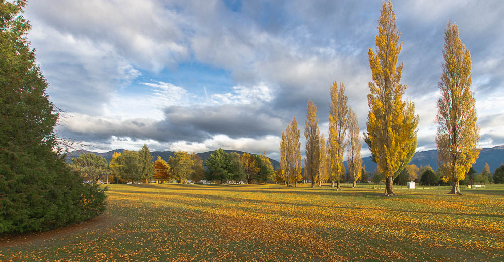 Te Anau Domain, New Zealand