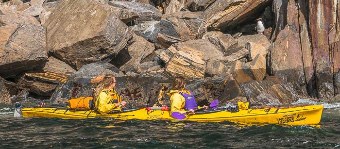 Rosco´s Milford Kayaks, Milford Sound, Fiordland
