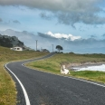 East Cape Road, New Zealand | photography