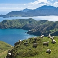 French Pass and D'Urville Island, New Zealand | photography
