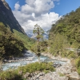 Hollyford River and Milford Road, New Zealand | photography