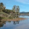 Lake Ianthe, West Coast, New Zealand | photography