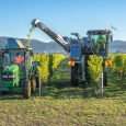 Wine harvester, Fairhall, Marlborough, New Zealand | photography
