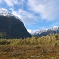 Milford Track, view from wetland boardwalk towards Mt Anau | photography