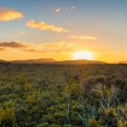 Sunset over peatland around Scott Burn, Stewart Island, New... | photography